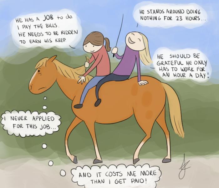 Horses Owe Us Nothing