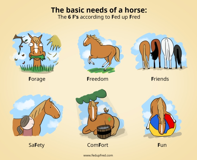 basic needs2.jpg